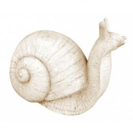 Escargot en pierre ton vieilli