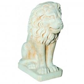 Lion assis ton vieilli