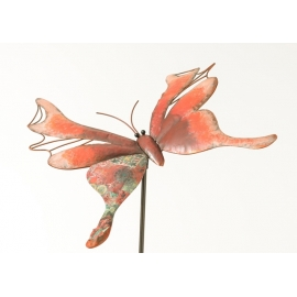 Pic papillon