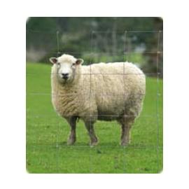 Grillage mouton 1m